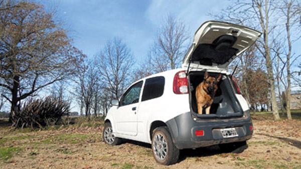 Trotsky nos reveló otros usos del Uno Cargo: un auto pet-friendly.